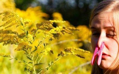 5 ways Bioresonance testing can help you enjoy your Summer